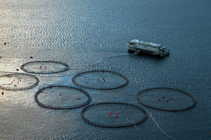 Die norwegischen Fischereiressourcen