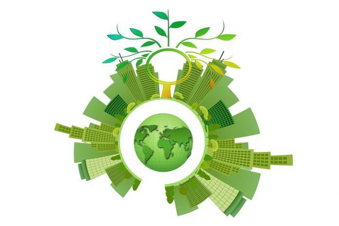 Zelená nabídka